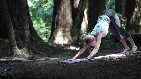 A woman does her yoga routine in a forested area Footage