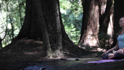 A woman sits alone in the forest and meditates Stock Video Footage
