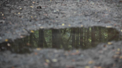 A woman jogs over a puddle reflecting the woods of the... Stock Video Footage