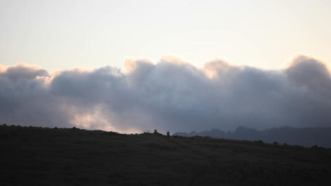 A person walks with their dog on a grassy hill near sunset Stock Video Footage