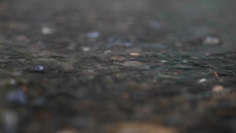 Raindrops splash on the ground Stock Video Footage