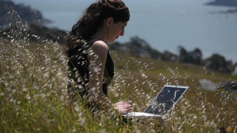 A woman using a laptop sits in a field by the shore Footage