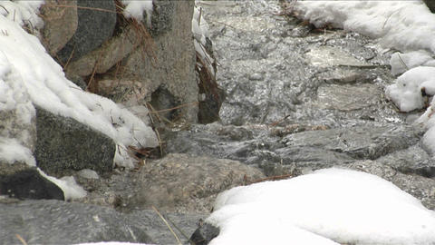 A mountain stream runs over snow covered rocks Stock Video Footage