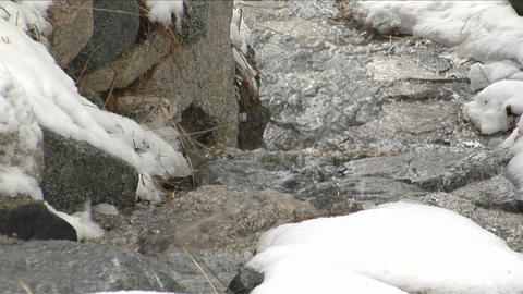 A mountain stream runs over snow covered rocks Footage