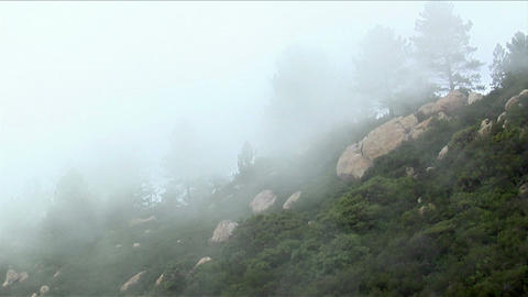 Fog rolls over a wooded mountainside Stock Video Footage