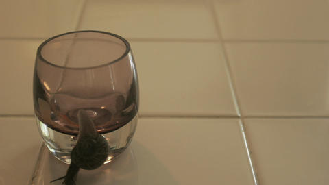 A large snail crawls around the rim of a glass of water... Stock Video Footage