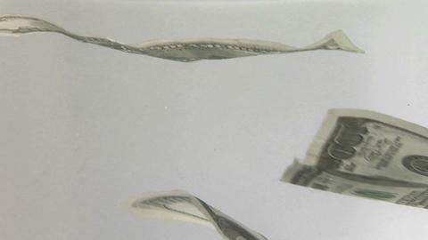 One hundred dollar bills float down Stock Video Footage