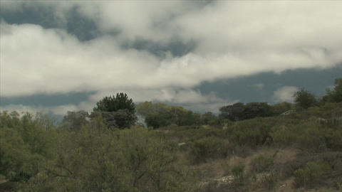 Clouds pass over a tree covered hill Stock Video Footage