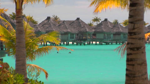 Tahitian palm trees gently blow in the wind with turquoise water and huts over the water in the back Footage