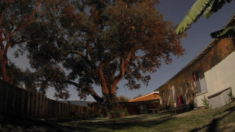 Zoom out overnight time lapse of full moon over an oak tree and backyard in Oak View, California Footage