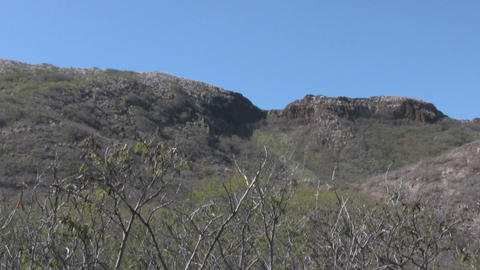 Diamondhead01 stock footage