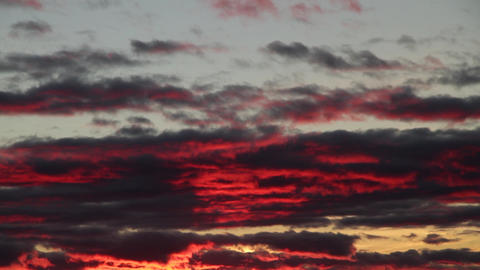 bloody sunset Stock Video Footage