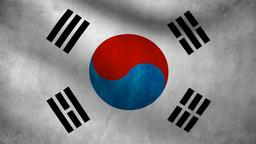 South Korea flag Animation