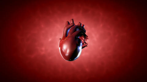Human Heart stock footage