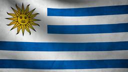 Uruguay flag Animation