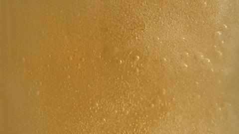 Beer Feed Stock Video Footage