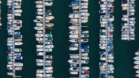 Aerial view of the marina filled with yachts and boats, Tenerife, Canaries Live Action