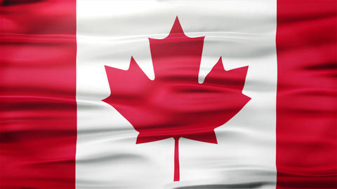 Realistic Seamless Loop Flag of Canada Waving In The Wind With Highly Detailed F Animation