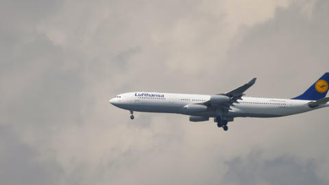 Lufthansa Airbus A340 landing Live Action