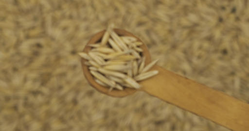Oat grains in a spoon. Refocusing from a spoonful of grain to a pile of grain Live Action