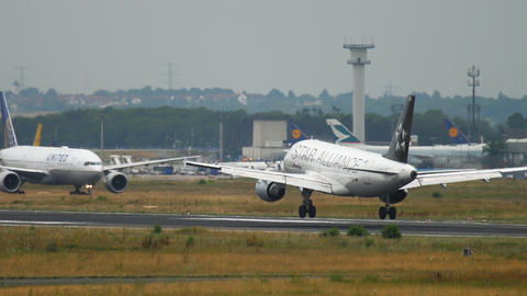 Airbus 319 airliner landing in Frankfurt Live Action