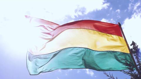 Bandera boliviana Footage