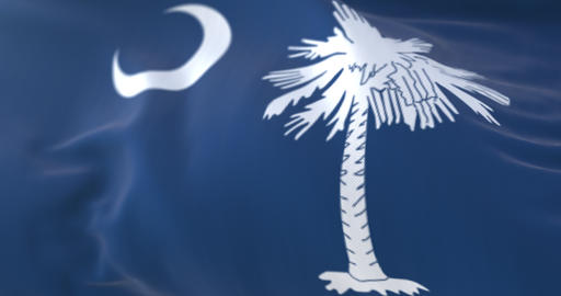 Flag of american state of South Carolina, region of the United States. Loop Animation