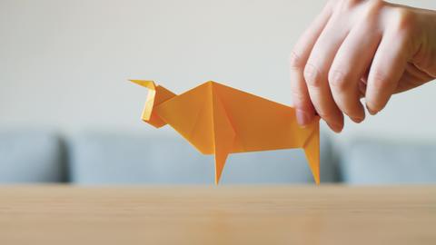 Origami Animals 0