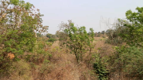 Area around Nagpur, India. Dry foothills with orchards (farmers gardens) Live Action