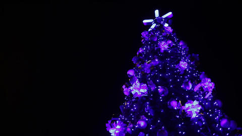 Magic fairy lights sparkling on tall Christmas tree, creating festive mood Footage