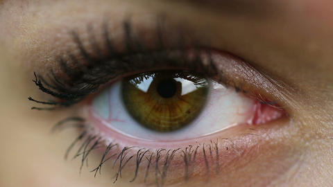 Eye extreme close-up. Makeup. Woman on reception at the oculist. Healthcare Footage