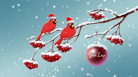 Short Christmas Animated Cards AE Progect 1