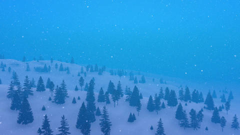 Winter fir forest at heavy snowfall aerial view Footage