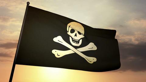 Pirat flag 03 Stock Video Footage