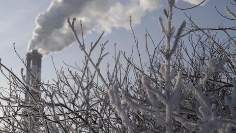 frosty smoke Stock Video Footage