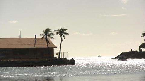 Ala Moana Beach 01 Footage
