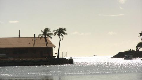 Ala Moana Beach 01 Stock Video Footage