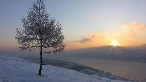 Winter landscape Footage