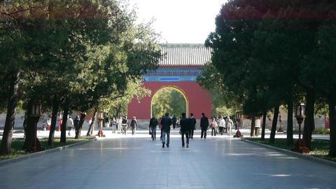 People walk in cypress trees park,China Beijing red door... Stock Video Footage