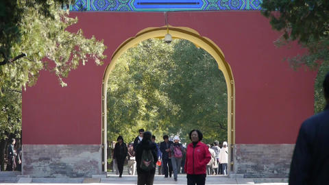 Asian People walk in cypress trees park,China Beijing red... Stock Video Footage