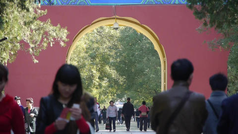 People walk in cypress trees park,China Beijing red door... Stock Video Footage