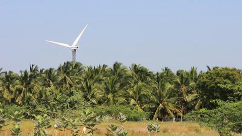 Energy alternatives 5. Wind farm in Indian province of Kerala Footage