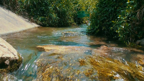 Natural stream flow in national park Footage