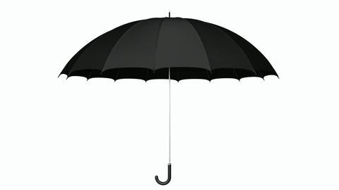 Black umbrella 3D animation Animation