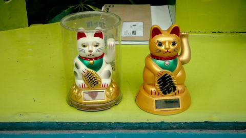 Maneki Neko. Chinese fortune cat is waving his paw Live Action