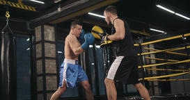 Boxer training punches in boxing club with mitts 4k video. Fighter blows trainer Footage