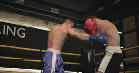 Boxers training boxing ring 4k video. Fighters sparring technique: punch defense Footage
