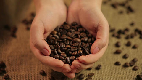 Woman holding handful of flavorful roasted coffee beans, world's favorite drink Live Action