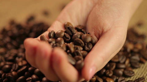 Select dark roasted Arabica coffee beans dropping in female hand, flavored drink Live Action
