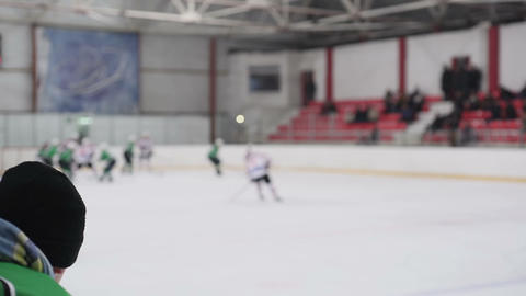 Active men playing hockey on ice rink, masculine hobby, sportive lifestyle Live Action